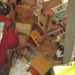 Photo Of Hoarded House In Catford