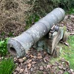 Ships Cannon In Garden