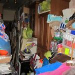 view compulsive hoarding through a social science lens